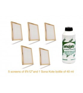 """Practicals material for Graphics Class 12 DPS Kit consists 5 screens of 10"""" x 12"""" and 1 bottle of Sona Kote 500 ml."""