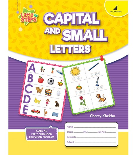 Capital and Small Lettters Little Steps