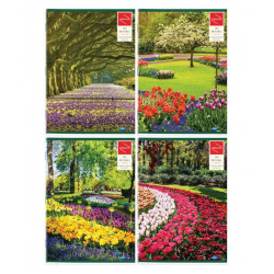 Long book A4 108 pages Pack of 4