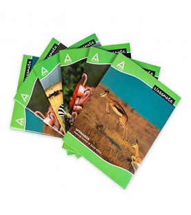 Classmate A4 172 pages Single line Soft Cover Pack of 6