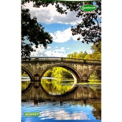 Long book A4 264 pages Single line 1 pc