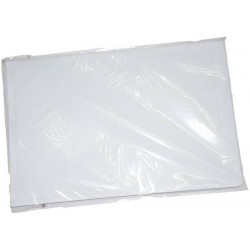 Graphpaper A4 65 gsm 1 inch 100 sheets Pack of 1