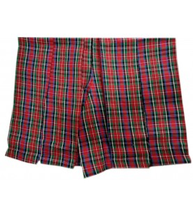 DAV School Uniform Multicolored Skirt for Girls