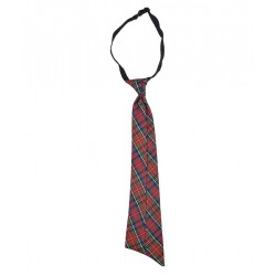 DAV School Uniform Multicolored Tie