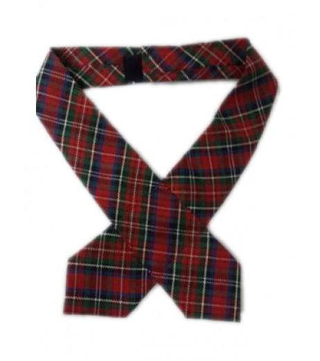 DAV School Uniform Multicolored Tie