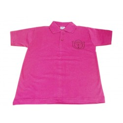 DPS Nerul School Uniform Pink P.T. T-Shirt for Boys