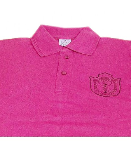 DPS Nerul School Uniform Pink P.T. T-Shirt for Boys