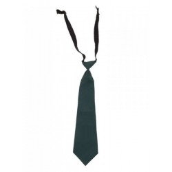 DPS Nerul School Uniform Green Tie
