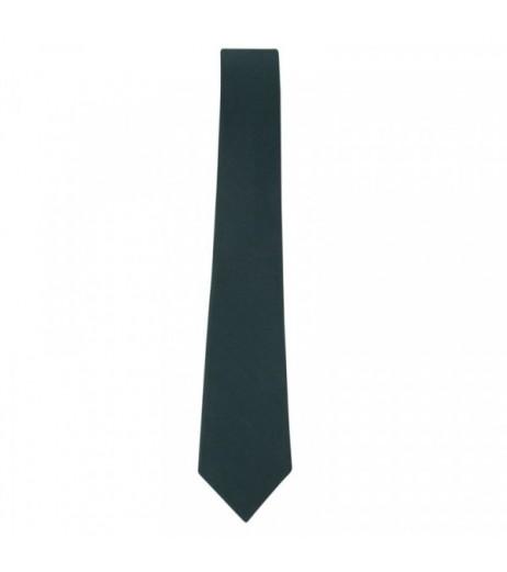 DPS Nerul School Uniform Green Tie