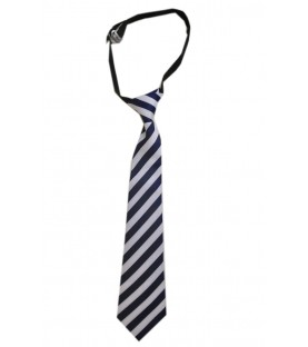 Presentation Convent School Uniform Multicolored Tie
